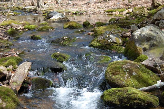 stream-glynwood