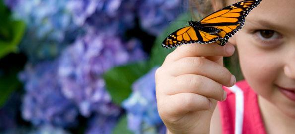 girl_butterfly
