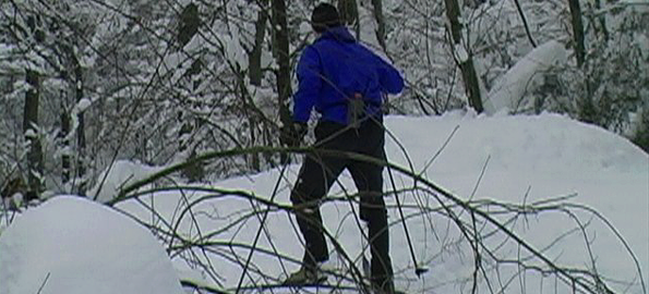 cross_country_skier