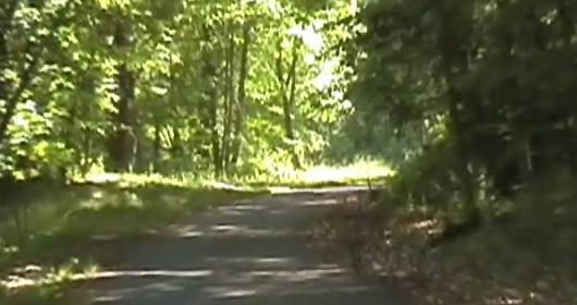 north county trail